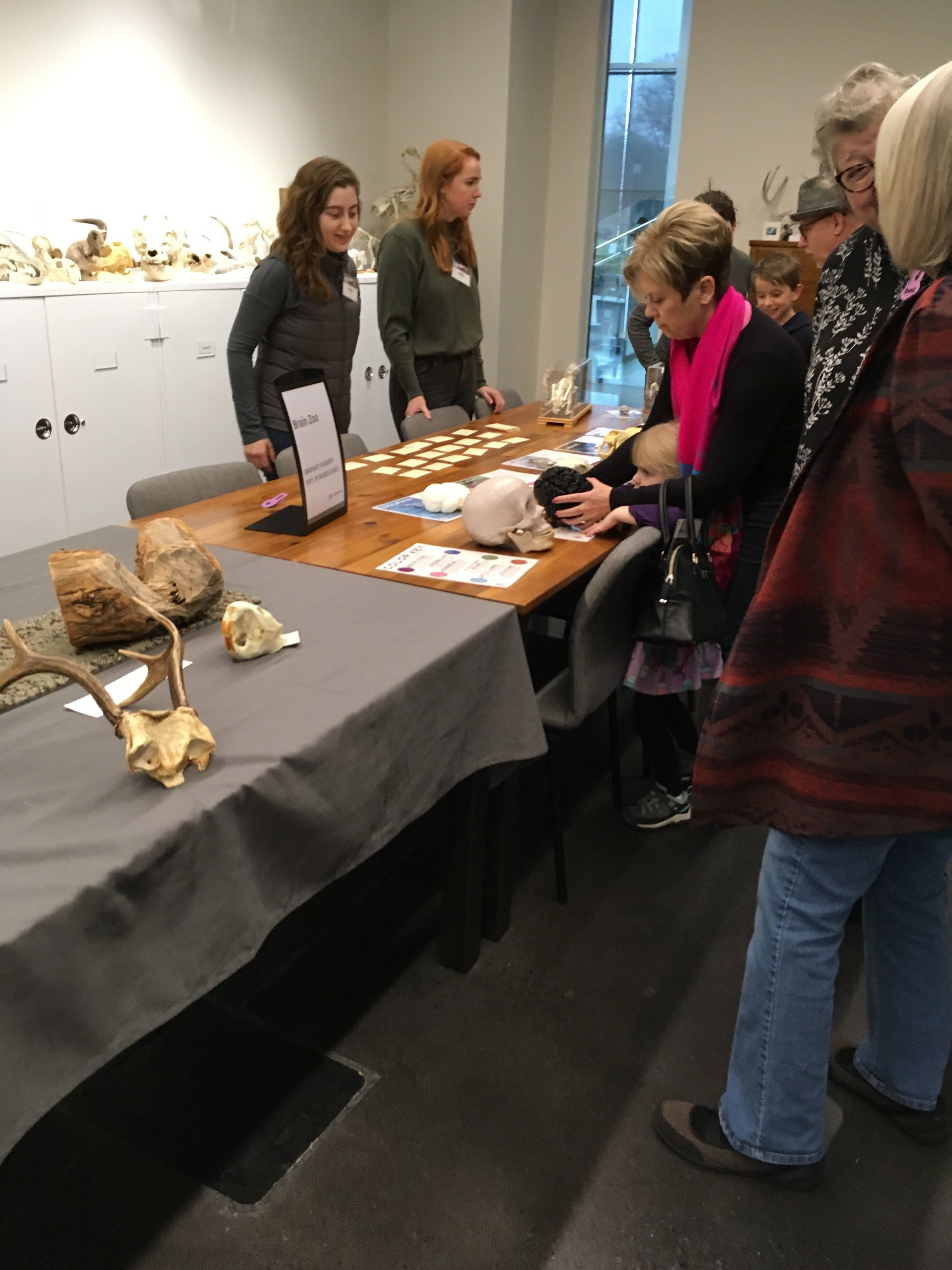 Brain Zoo at the Bell Museum